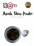 Pearl Pigment - Shinny Powder - Antique Gold - 22 ml