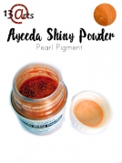 Pearl Pigment - Shinny powder - ORANGE